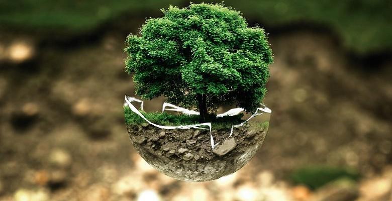 Commande publique : les engagements montpelliérains en faveur du développement durable